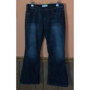 Morgan New Boot Dark Wash Jeans Extra Short